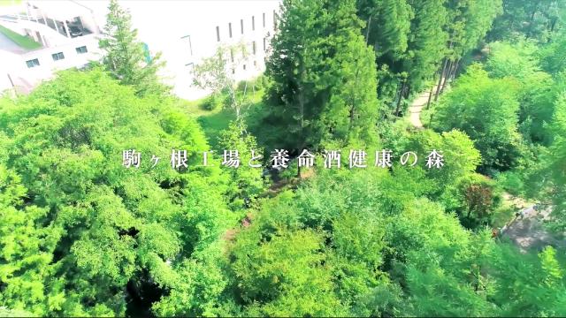 https://www.kamakuraim.jp/media/images/_i/20210320_131748/5.png